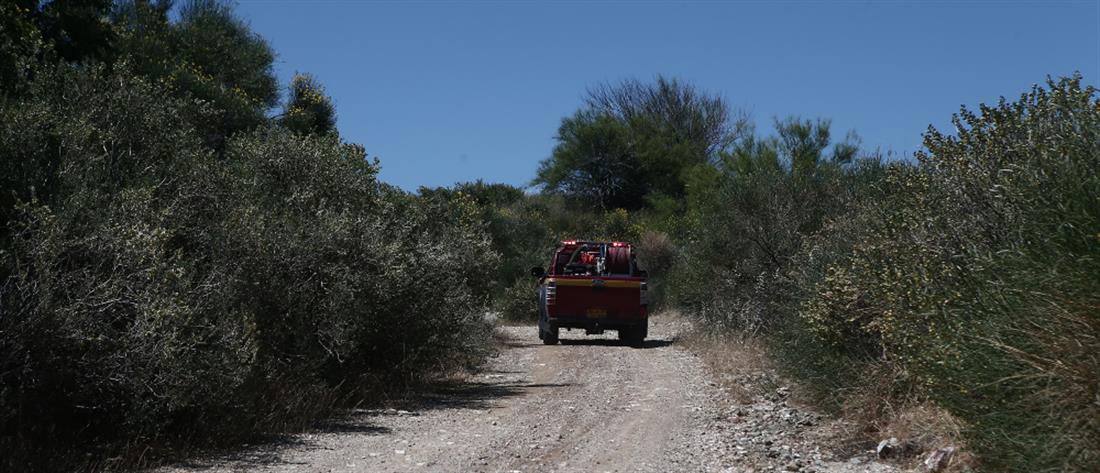 Έρευνα - έρευνες - εξαφάνιση - βουνό - Υμηττός - Πυροσβέστες - drone
