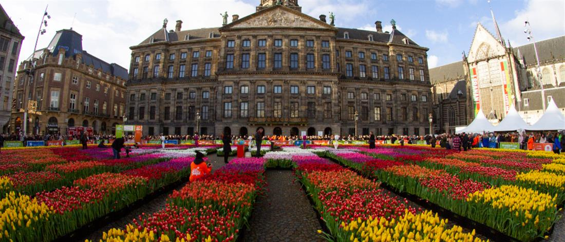 """""""Θάλασσα"""" από τουλίπες σε πλατεία του Άμστερνταμ (εικόνες)"""
