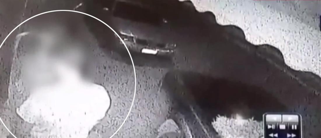 Πήγαν να κλέψουν ψιλικατζίδικο κι έφυγαν με... αρνιά (βίντεο)
