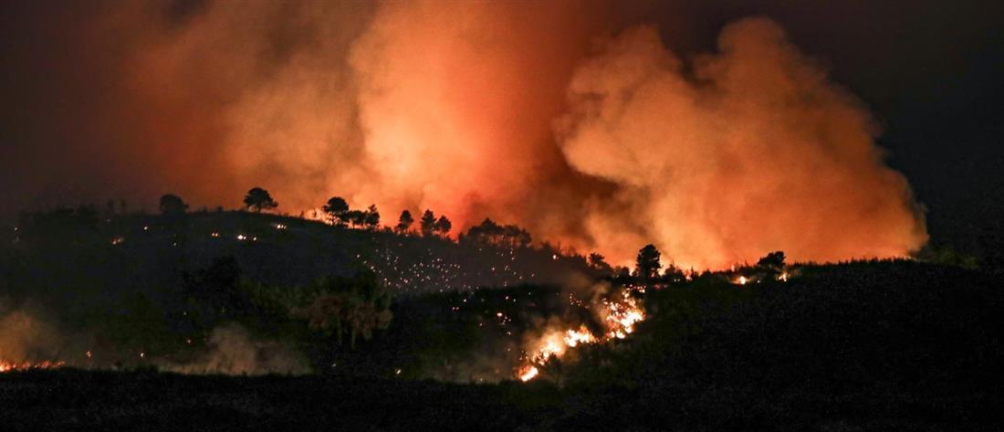 Φωτιές: νύχτα αγωνίας στα μεγάλα πύρινα μέτωπα στην Ελλάδα (εικόνες)