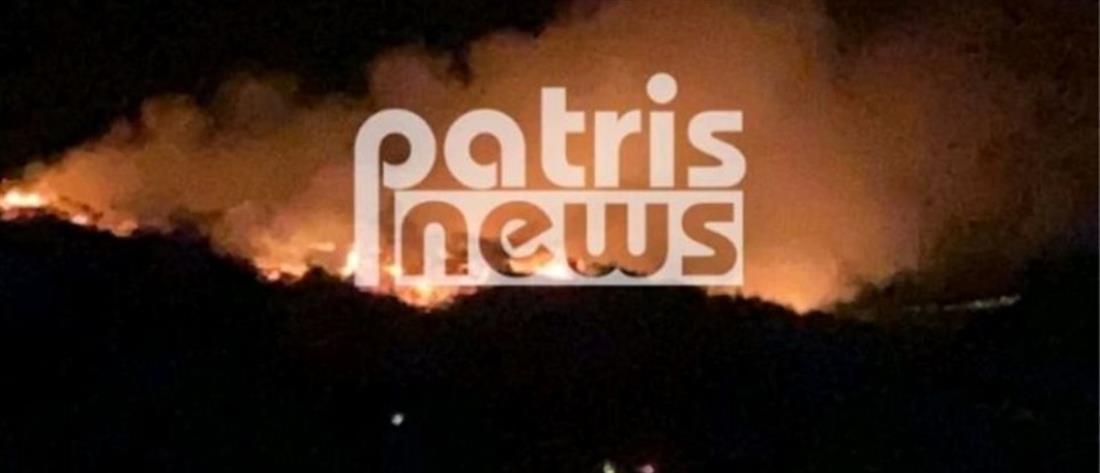 Σμέρνα: Μεγάλη φωτιά σε δάσος (βίντεο)
