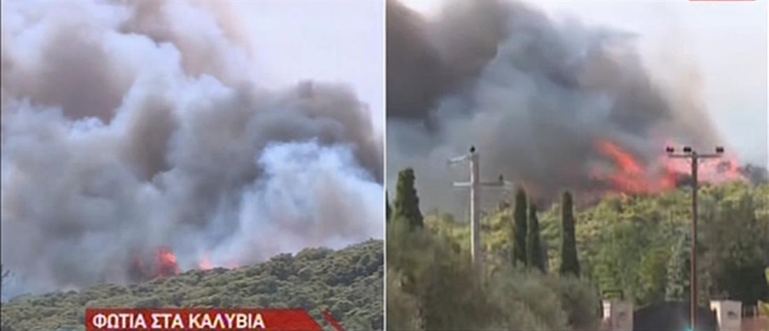 Φωτιά στα Καλύβια: εκκένωση οικισμού και διακοπή κυκλοφορίας (εικόνες)