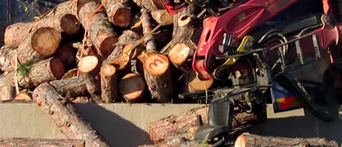 Τραγωδία: γυναίκα καταπλακώθηκε από καρότσα με ξύλα