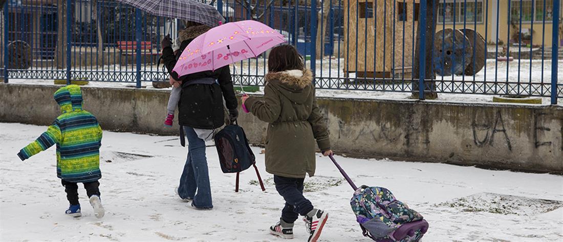 Κλειστά σχολεία λόγω κακοκαιρίας και απεργίας