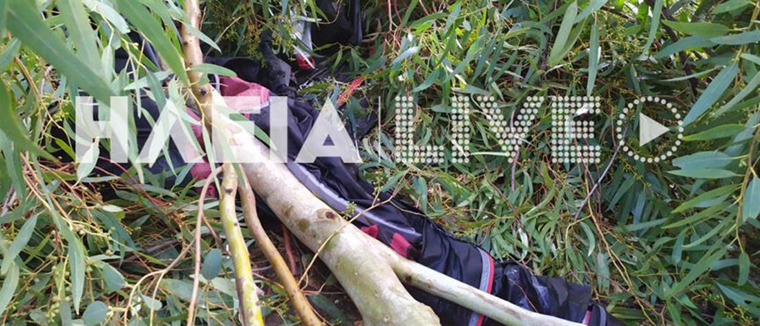 """Κακοκαιρία """"χτύπησε"""" την Ηλεία - Ξεριζώθηκαν δέντρα, τραυματίστηκε 32χρονη (εικόνες)"""