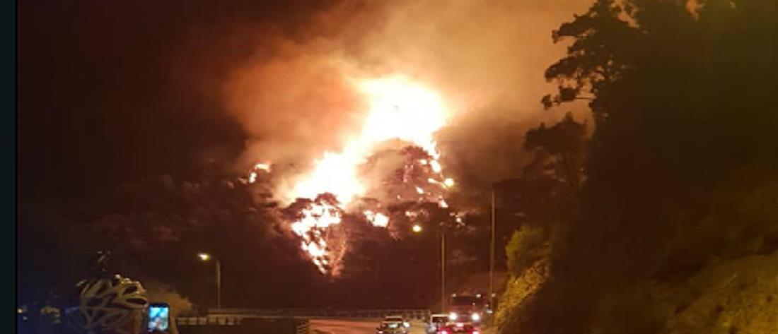 Φωτιά στην Σάμο (εικόνες)