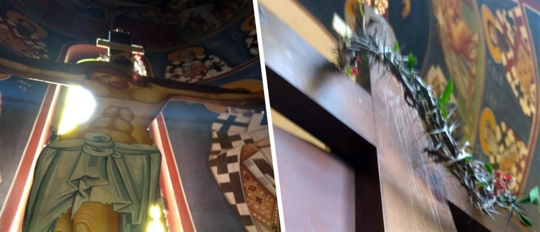 Άνθισε το ακάνθινο στεφάνι Χριστού (εικόνες)