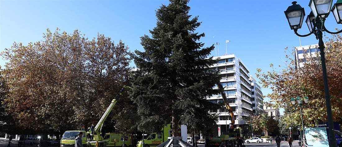 Αθήνα: Στήνεται το χριστουγεννιάτικο δέντρο στο Σύνταγμα (εικόνες)