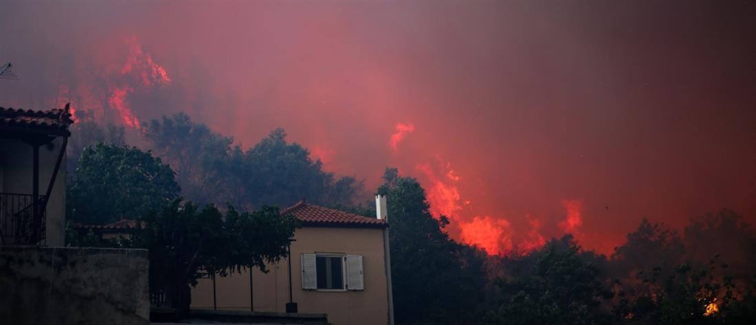 Φωτιά στην Εύβοια: Ενεργοποιήθηκε ο Ευρωπαϊκός Μηχανισμός Πολιτικής Προστασίας