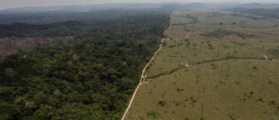 """""""SOS"""" εκπέμπουν τα δάση του Αμαζονίου (βίντεο)"""