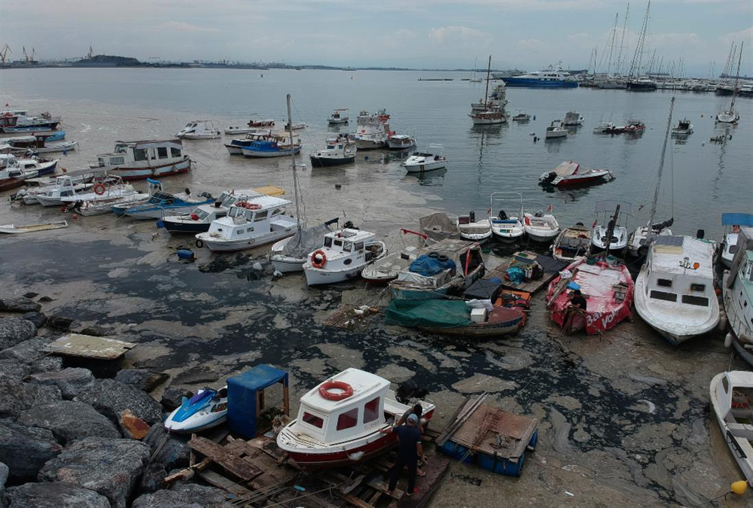 AP - Τουρκία- Θάλασσα του Μαρμαρά - βλέννα
