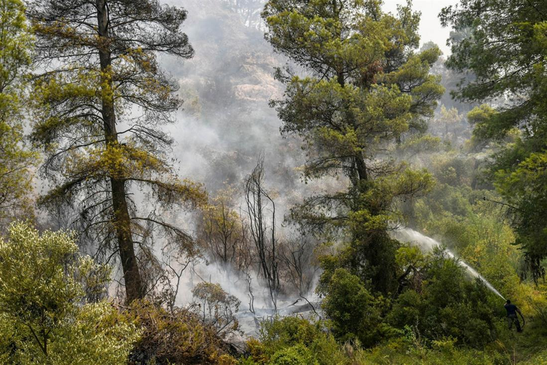 Εύβοια - Φωτιά - πυρκαγιά -Κοντοδεσπότι - Ψαχνά
