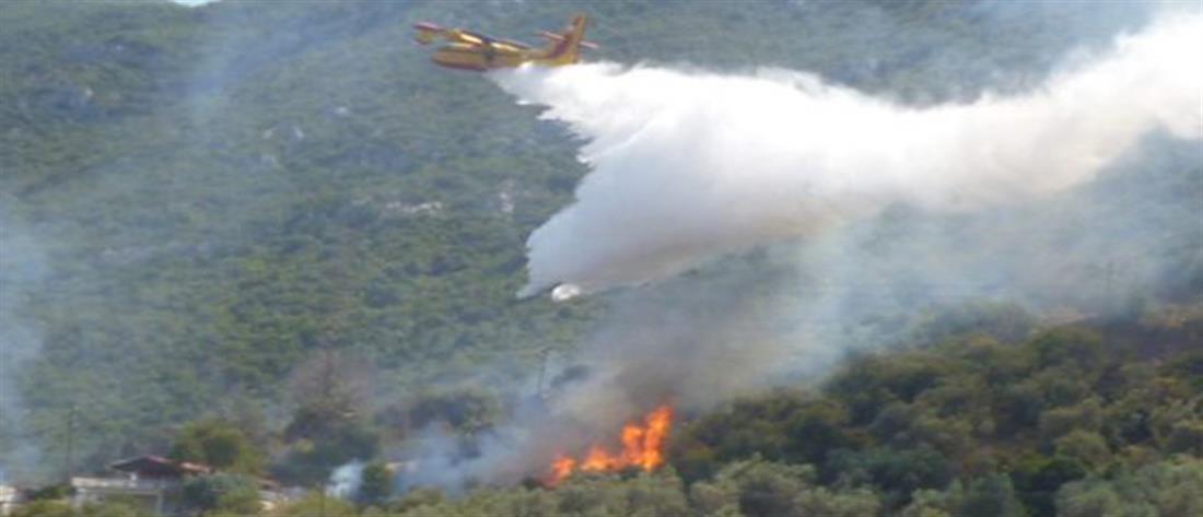 """""""Συναγερμός"""" από πολλές φωτιές που ξέσπασαν ταυτόχρονα στην ...ίδια περιοχή"""