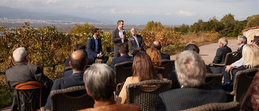 Επιστροφή του ΕΦΚ στο κρασί και δάνεια σε οινοποιούς