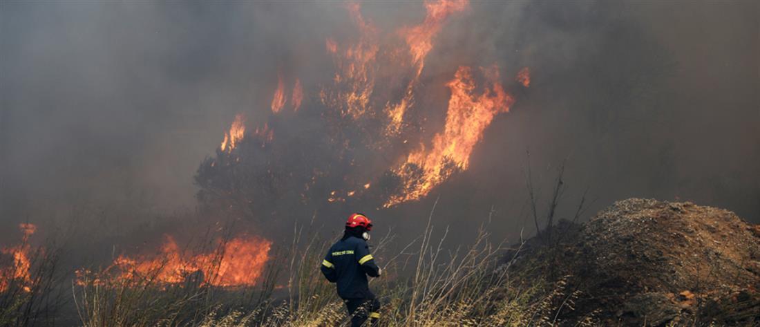 Φωτιά στα Καλύβια: εκκένωση οικισμών - σε κατάσταση εκτάκτου ανάγκης ο Δήμος Σαρωνικού