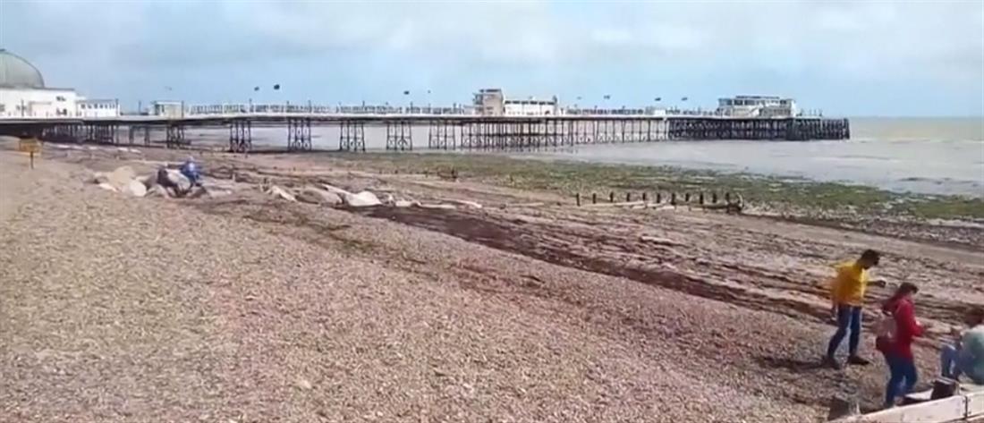 """Ύποπτα συμπτώματα σε λουόμενους """"σφράγισαν"""" την παραλία (εικόνες)"""