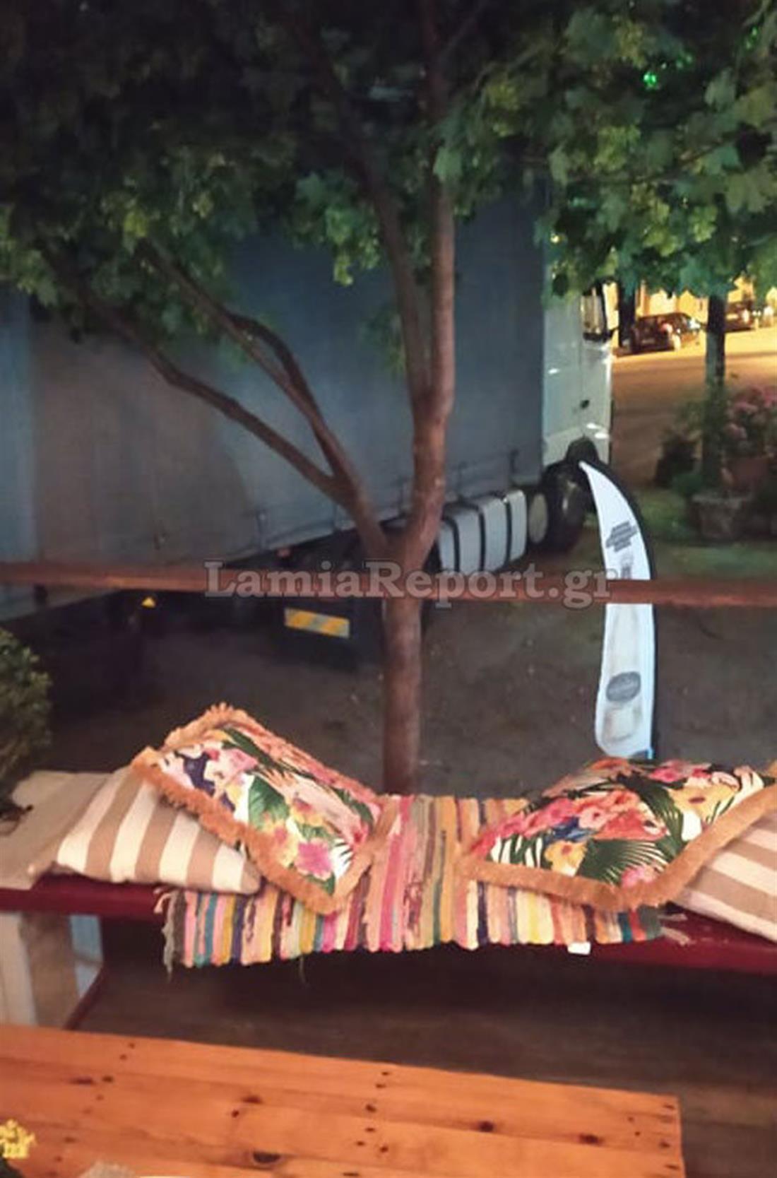 Νταλίκα - δέντρο - πλατεία Αμφίκλειας - Λαμία