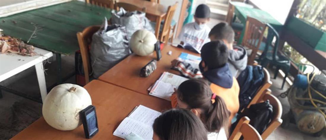 """ΝΔ: Fake news με """"παιδιά που κάνουν τηλεκπαίδευση στο καφενείο"""""""
