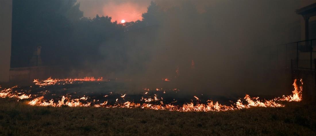 Φωτιά στη Βαρυμπόμπη: Σε επιφυλακή η Αστυνομία στην Αττική
