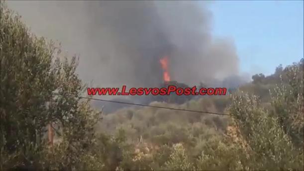 Φωτιά πάνω από τον καταυλισμό μεταναστών στην Μορια