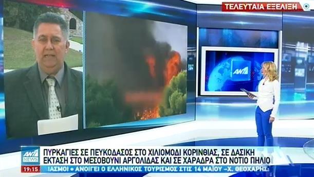 Τρεις δασικές πυρκαγιές μέσα σε λίγες ώρες
