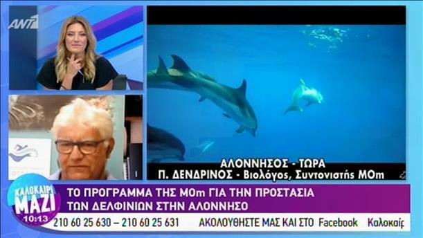 Πρόγραμμα για την προστασία των δελφινιών στην Αλόννησο
