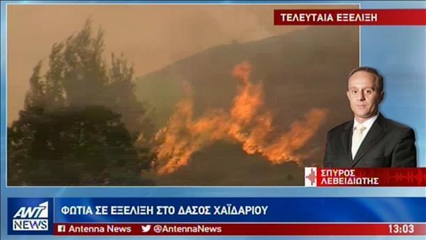 Φωτιές σε Δάσος Χαϊδαρίου και Σαλαμίνα