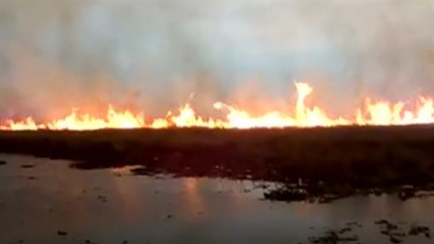 Η φωτιά καίει κατά μήκος των συνόρων της Βολιβίας
