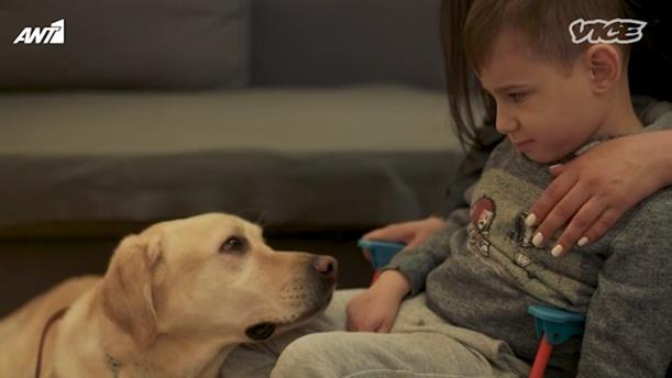VICE SPECIALS - «Σκύλοι που Αλλάζουν Ζωές»