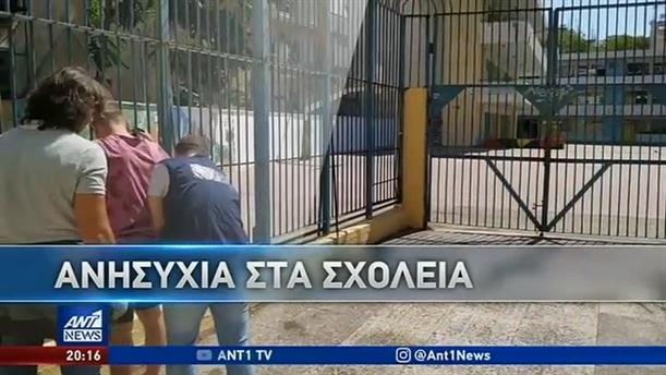 """Μαρτυρίες στον ΑΝΤ1 για τη """"μάστιγα"""" του σκανκ"""