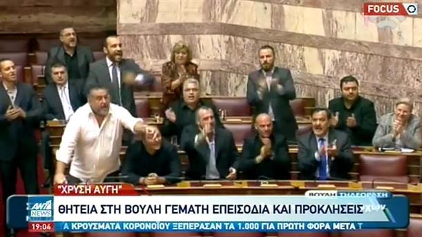 Χρυσή Αυγή: η επεισοδιακή παρουσία στην Βουλή