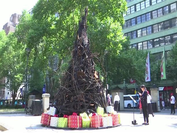 Αυστραλία: στόλισαν δέντρο από τα καμένα
