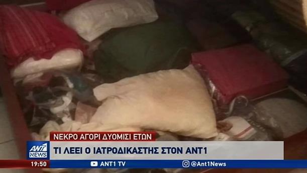 Ασφυκτικός ο θάνατος του 2,5 ετών αγοριού στο Ίλιον