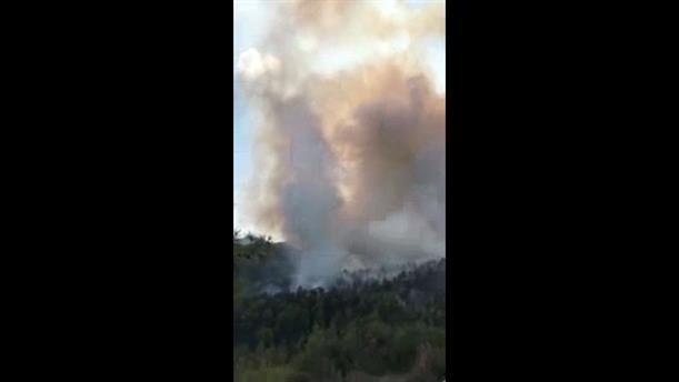 Πυρκαγιά στο δάσος Μαχαιρά στην Κύπρο