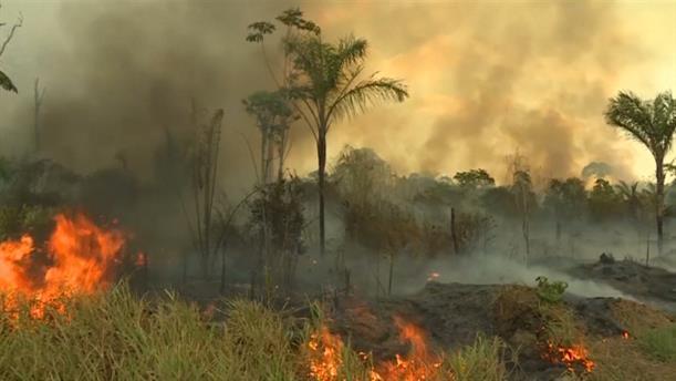 Drone βίντεο δείχνει το μέγεθος της καταστροφής στον Αμαζόνιο