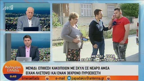 Θύμα επίθεσης κακοποιών στην εκπομπή «Καλημέρα Ελλάδα»