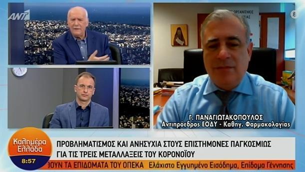 Γ. Παναγιωτακόπουλος - αντιπρόεδρος ΕΟΔΥ – ΚΑΛΗΜΕΡΑ ΕΛΛΑΔΑ - 26/01/2021