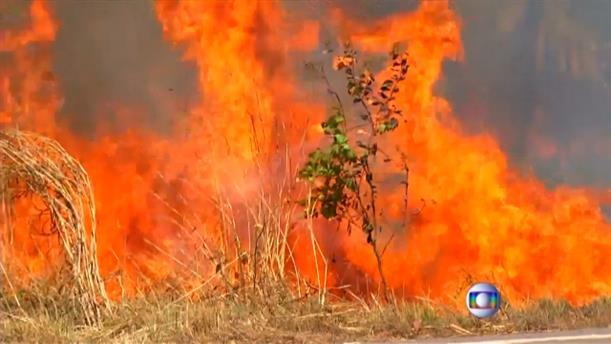 Ρεκόρ πυρκαγιών καταγράφεται στη Βραζιλία
