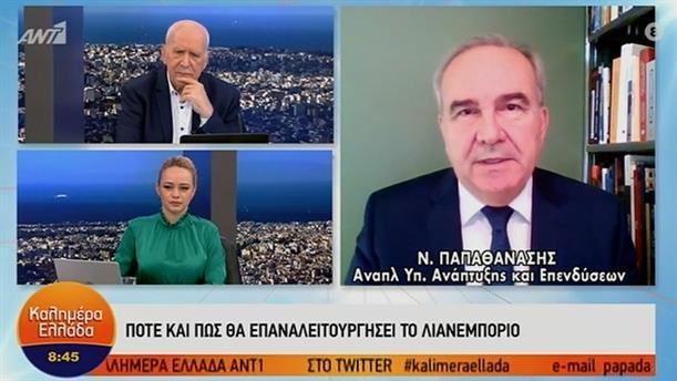 Νίκος Παπαθανάσης - Αναπληρωτής Υπουργός Ανάπτυξης και Επενδύσεων – ΚΑΛΗΜΕΡΑ ΕΛΛΑΔΑ - 06/01/2021