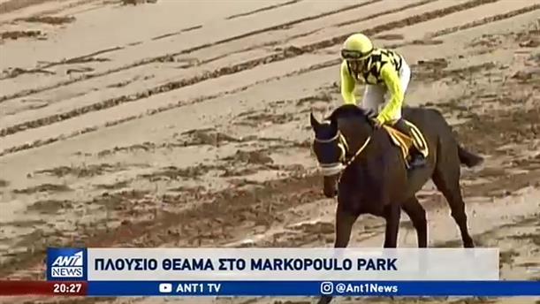 Συναρπαστικές ιπποδρομίες παρακολούθησαν και αυτή την Κυριακή, όσοι επισκέφθηκαν το Markopoulo Park