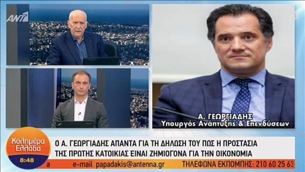 Άδ. Γεωργιάδης: Διαφωνώ με την απόλυτη προστασία της πρώτης κατοικίας
