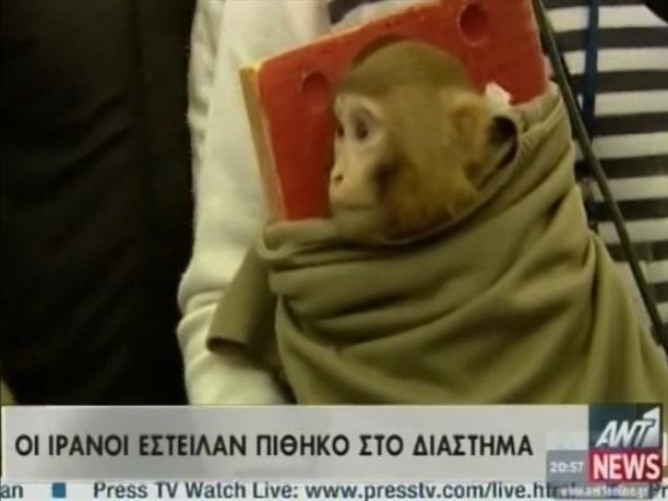 Οι Ιρανοί έστειλαν πίθηκο στο διάστημα