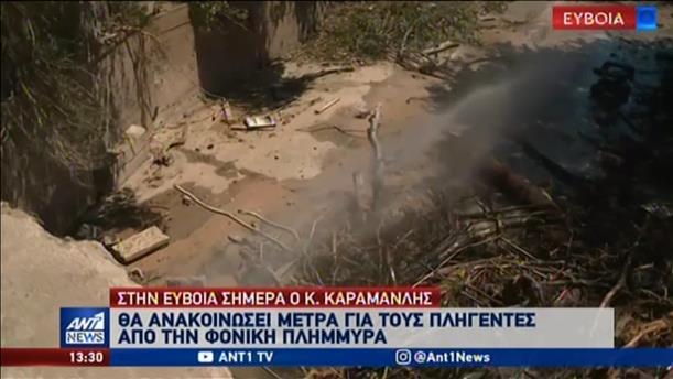 Ανακοίνωση μέτρων για τους πληγέντες στην Εύβοια