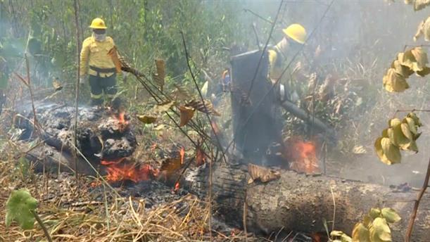 Οι πυροσβέστες προσπαθούν να αντιμετωπίσουν τις πυρκαγιές στον κατεστραμμένο Αμαζόνιο