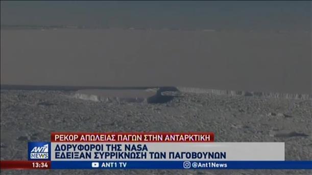«Ανεβάζει στροφές» το λιώσιμο των πάγων στην Ανταρκτική