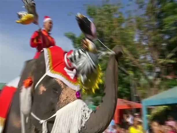 Με ελέφαντες μοιράζουν δώρα στα παιδιά