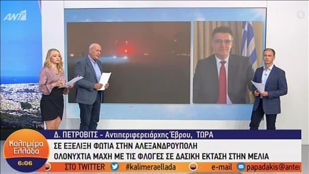 """Ο Δημήτρης Πέτροβιτς στην εκπομπή """"Καλημέρα Ελλάδα"""""""