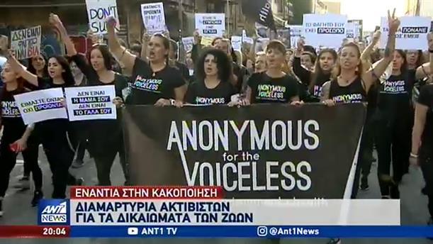 Παγκόσμια Ημέρα Ζώων: Διαμαρτυρία στο κέντρο της Αθήνας