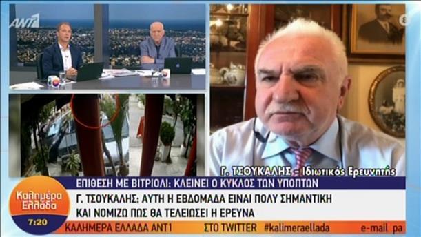 """Ο Γιώργος Τσούκαλης στην εκπομπή """"Καλημέρα Ελλάδα"""""""
