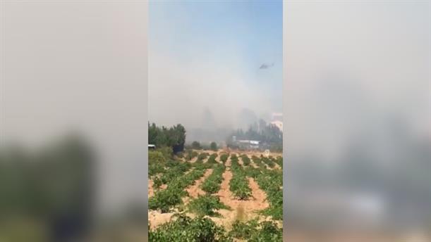 Πυρκαγιά στη Λούτσα